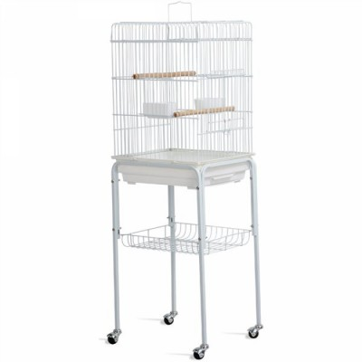 1611933474-h-400-cage.jpg